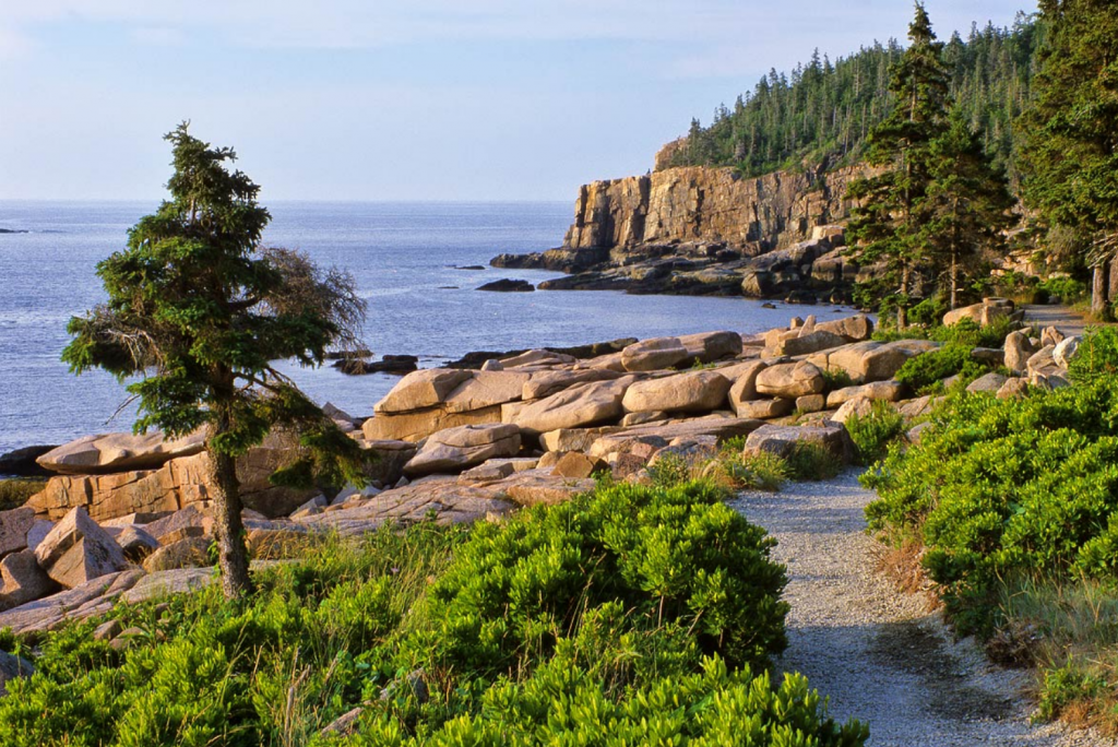 Why You Should do the Acadia National Park Tour in Fall